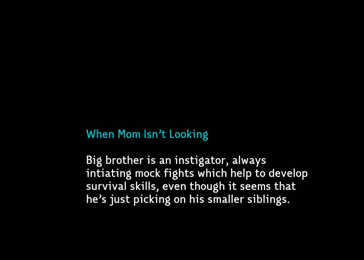 MomNotLooking2