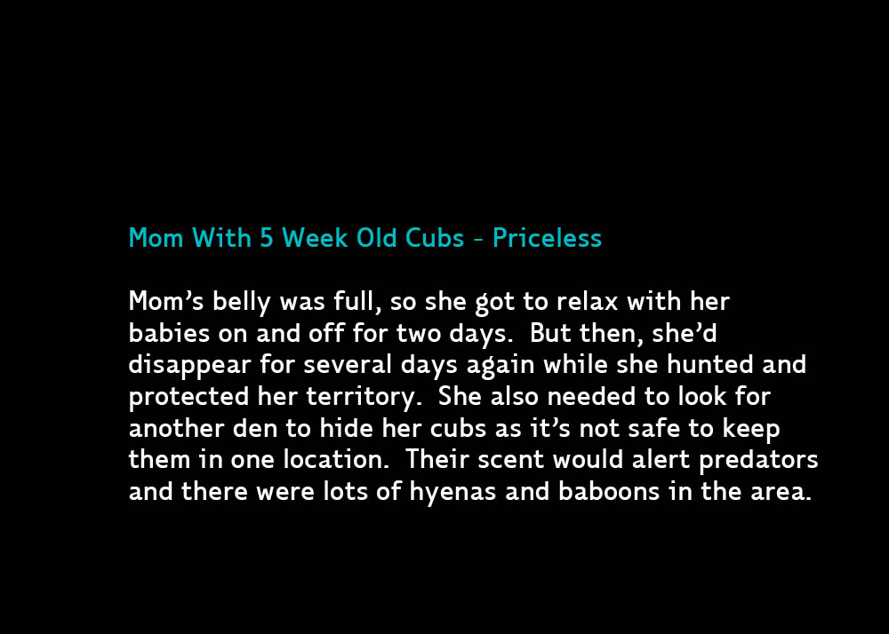 Priceless-Jul17-2012