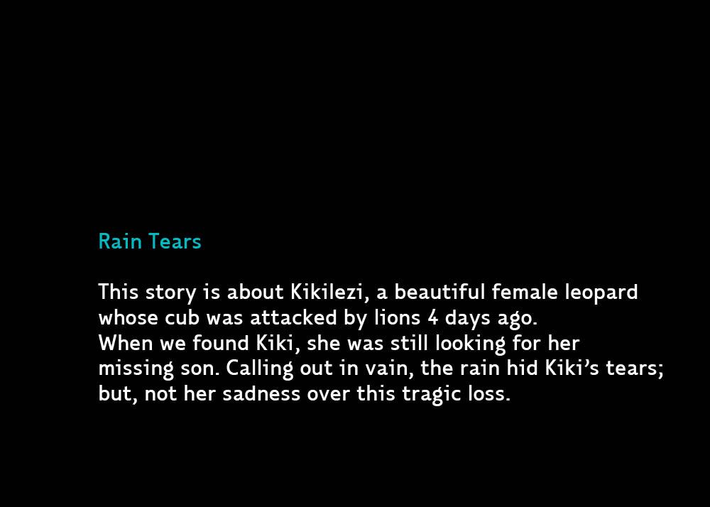 RainTears-Dec29-2011