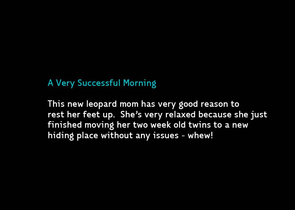SuccessfulDay-Oct4b-2013