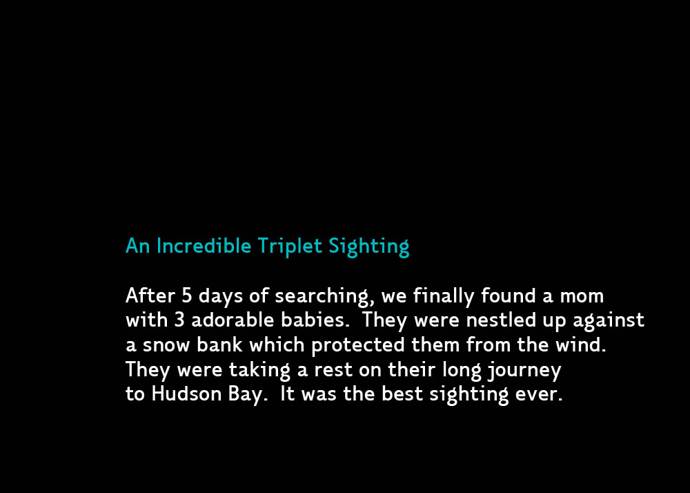 TripletsBestEverB-Apr24-2011