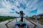 Mekong Delta - Vietnam  © Brian Cassey