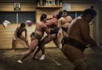 Sumo 'Beya' - Ryogoku - Tokyo - Japan  © Brian Cassey
