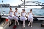 Sydney, Australia  © Dean Lewins