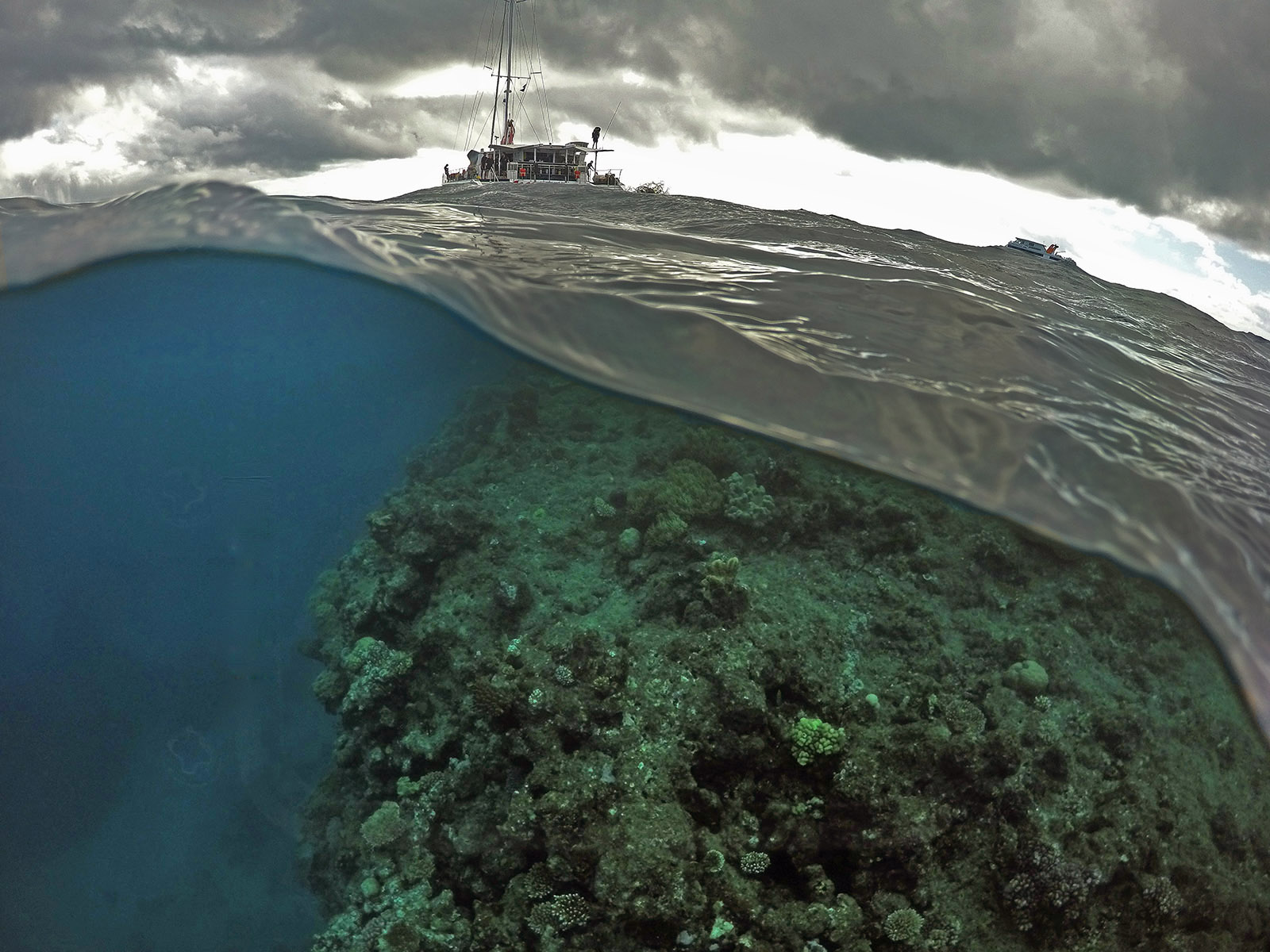 The end of the Great Barrier Reef ?  © Brian Cassey