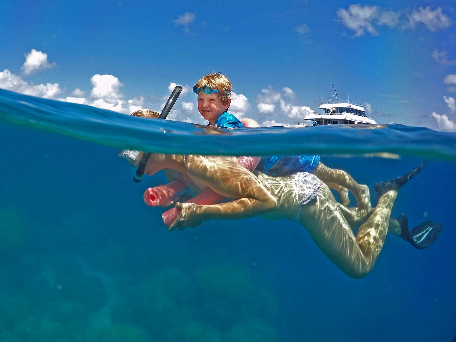 Opal Reef - Great Barrier Reef© Brian Cassey