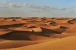 Sharjah - UAE  © Brian Cassey