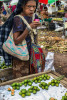 A customer samples betel nut at Nine Mile market.  © Brian Cassey