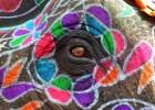 Elephant Festival - Jaipur - © Brian Cassey 2011