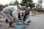 Two men search for their documnets in the Northern Coastal town of Ofunato were destroyed after a 9.0 earthquake caused a tsunami which hit the eastern coast of Japan on the 11th March, 2011.