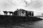 Floodwaters isolate a farmhouse in the township of Lawrence, New South Wales. © Sam Mooy 2011
