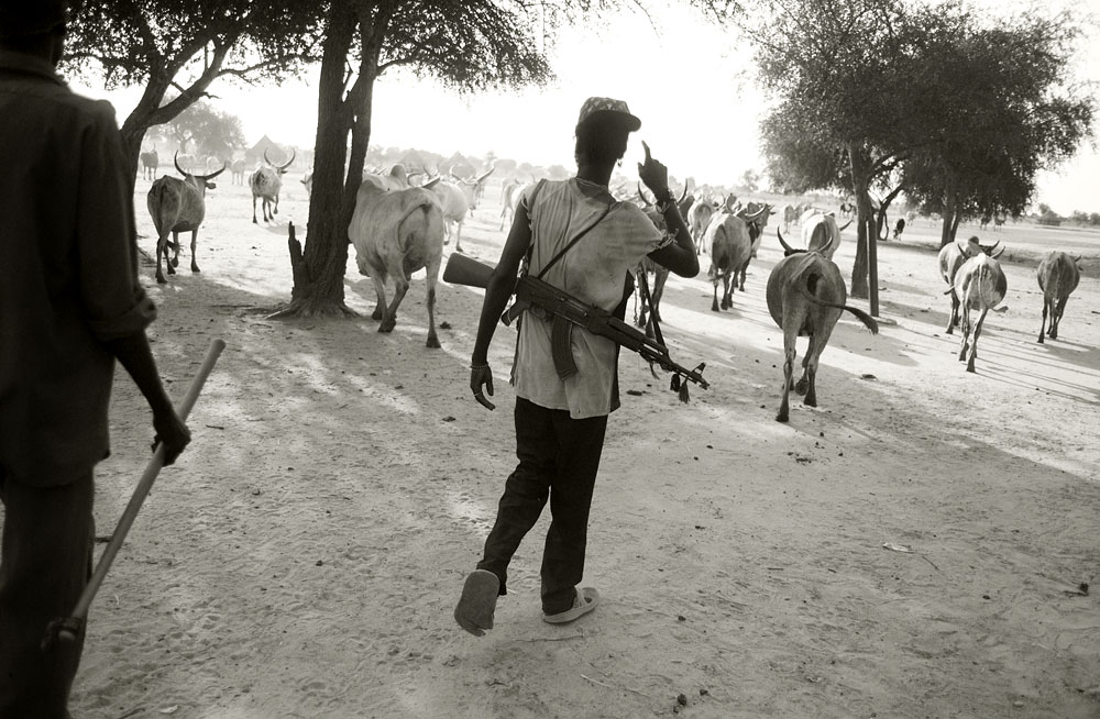 In South Sudan cattle are the cornerstone of society and are fiercely guarded against the frequent raids of other tribes.