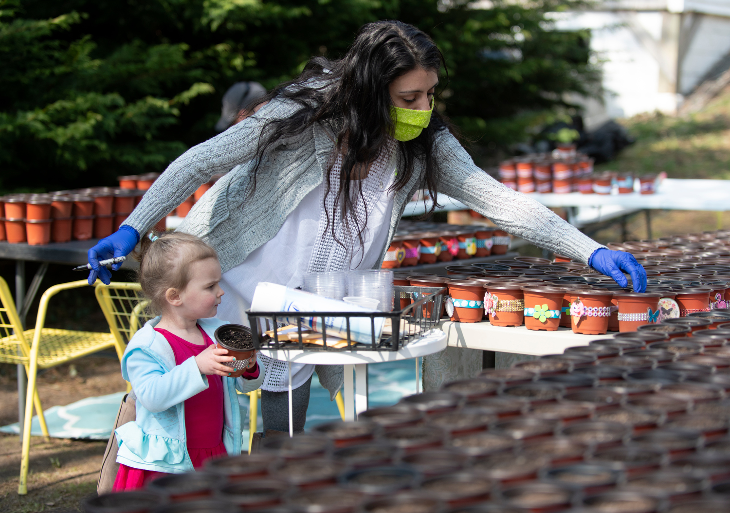 """HARWICH - Sarah Dennis, an on-call CNA, plants marigold and alyssum seeds with a little help from her 2-year-old daughter Maggie, Thursday, April 16, 2020. In just one week she went from a couple hundred pots to a couple thousand that will be delivered to shut-in seniors at assisting living facilities and cannot have visitors. """"We want them to know that they're not forgotten and we're thinking of them right now,"""" Dennis said of her initiative."""