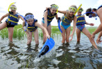 From left, Brewster Day Camp participants Kayleigh Johnson, 12, Elisabeth Cooperman, 13, Vicky Whitney, 12, Zoe Boardman, 13, and Molly McGurty, 12, struggle with their flippers while swim instructor George Farah offers assistance before snorkeling in Rock Harbor on Monday, August 12, 2013.