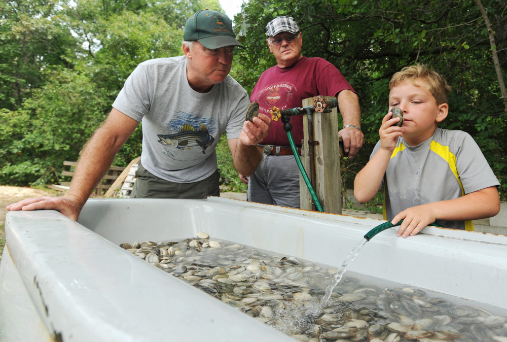 Deer Club members Glenn Gavin of West Barnstable and John Lovell of Hyannis teach Damien Chapman, 6, of Centerville how to sniff out bad clams before their 60th annual clambake on Sunday, August 31, 2014.