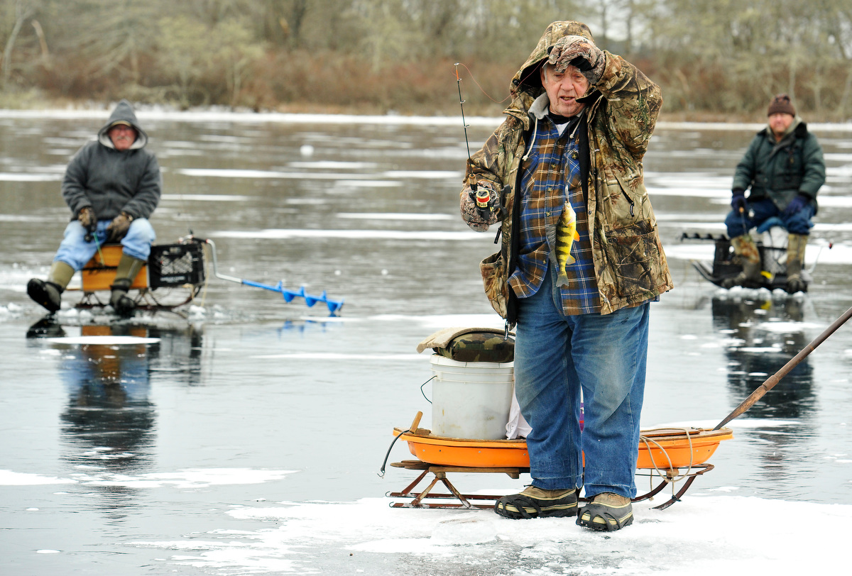 Bob Perry of South Harwich takes a gander at the yellow perch he pulled up a frozen over Mill Pond with his buddies Bill Trombi of East Harwich, left, and Jerry Kissell of Sandwich. {quote}We call these freshwater haddock,{quote} Perry said.