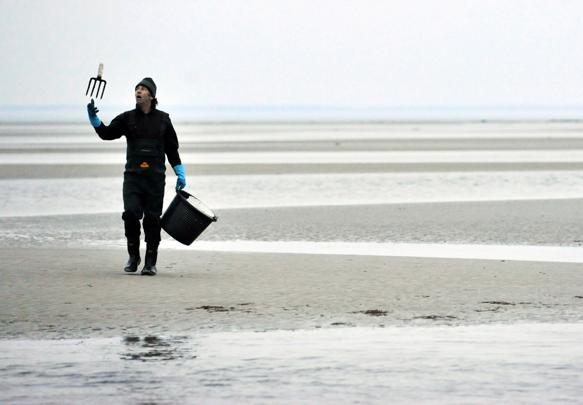 Paul Dunbar of Orleans tosses his rake in the air as he walks back from the Rock Harbor flats after digging for razor clams. Dunbar said this was one of the last low tides for a while during daylight hours so he made sure to get out.