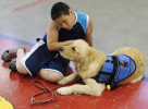 CONCORDIA, Kan. -- 06/21/11 -- Nickolas Qvarnstrom, 10, of West Yarmouth bonds with his service dog, Keno, during a break in an obedience training session at the Kansas National Guard armory. Nickolas and his younger sister, Abby, were adopted from a Kazakhstan orphanage. Both children were raised in the arms of the same loving and supportive family but Nickolas has contended with a myriad of social emotional issues. The service dog was trained to help him navigate his emotional highs and lows.