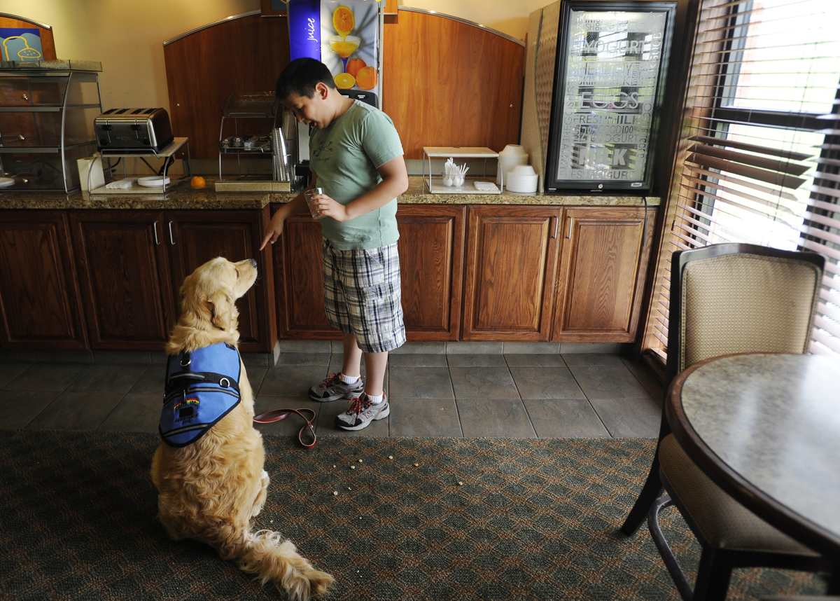 CONCORDIA, Kan. -- 06/20/11 -- Nickolas puts Keno in a {quote}stay{quote} while he gets himself a drink at the hotel during lunch break on the first day of the week-long CARES training seminar.