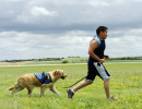 CONCORDIA, Kan. -- 06/21/11 -- Nickolas decides to go for an impromptu jog with Keno in the fields after practicing the {quote}take a break{quote} command, which allows the dog to relieve himself, behind the Kansas National Guard armory.