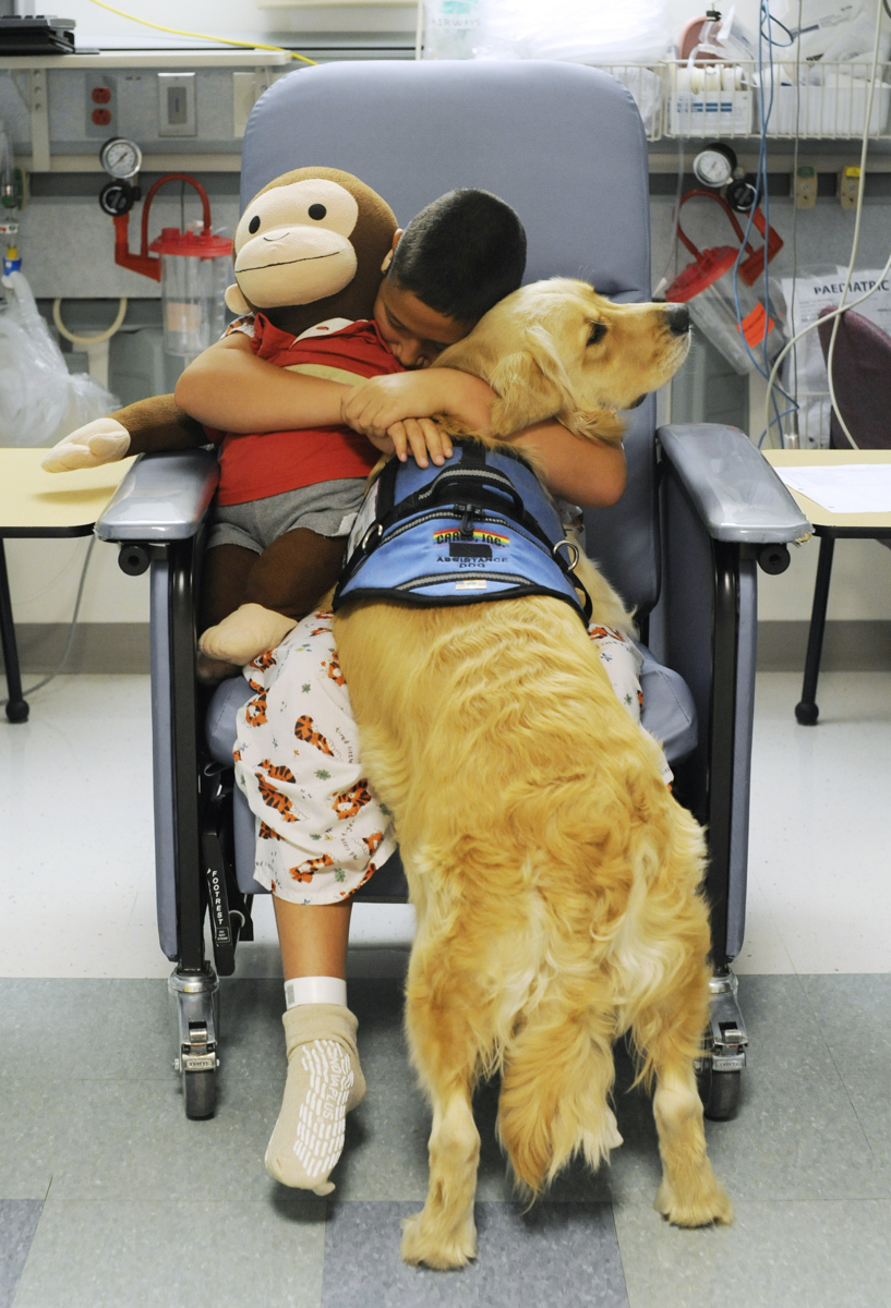 Nickolas Qvarnstrom hugs his two best friends, his monkey and his service dog, Keno, in the pre-op room before having his tonsils removed on Wednesday, August 10, 2011. The Qvarnstroms sought permission from the hospital to bring Keno along for his assistance in curbing Nickolas's anxiety. Nurse manager on the surgical day care unit Barbara Clancy believes this is the first service animal to accompany a child to pre-op at Cape Cod Hospital. This photo is part of a series, which is showcased in the {quote}Picture Stories{quote} section.