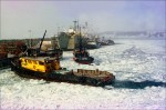 Tugboats and a smaller boat break up the ice in the harbor of St. Paul Island in January and February of 1995. This harbor is where most of the fleet delivered opilio crab in the 1990's, including the boats in the back of this frame delivering to the Unisea processor.  © copyright Karen Ducey