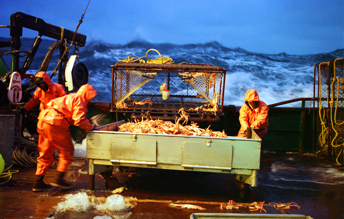 "Steadying themselves on the pitching, water-sloshed deck, two crewmen from the Polar Lady move a sorting table loaded with Opilio crab. In January and February crabbers fish for ""Opies"" or snow crabs—smaller cousins of king crabs—with 700-pound (315.5-kilogram) crab pots. Even as the boats battle 30-foot (9-meter) waves and heavy gales the crew must hoist, stack, move, and empty pots. The work is tedious, and crabbers always run the risk of being hit suddenly by a swinging or falling crab pot.   © copyright Karen Ducey"