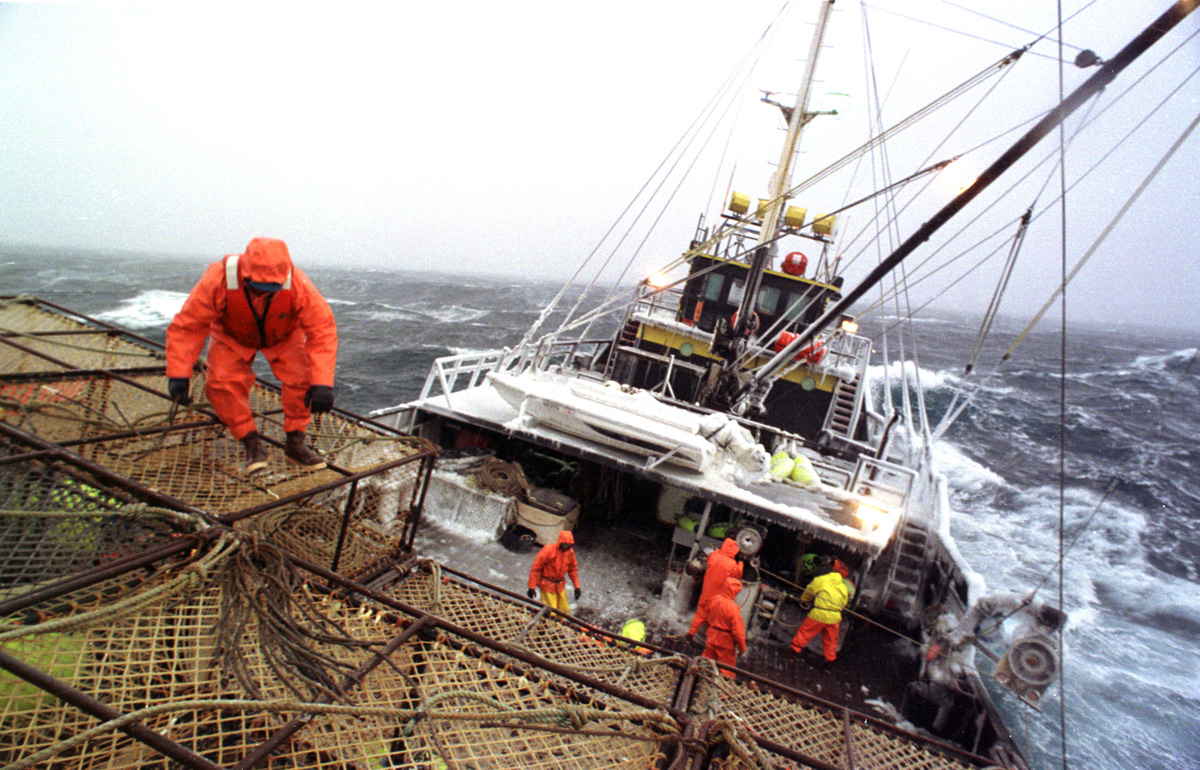 Crewman Joe Hinton works on the stack on the fishing vessel {quote}Reliance{quote}  during a storm in the Bering Sea which took down four boats in four days during opilio crab fishing in February 1994. Only one crewman lost his life which was considered very fortunate. The Bering Sea is known for having the worst storms in the world. Crab fishing in the Bering Sea is considered to be one of the most dangerous jobs in the world. This fishery is managed by the Alaska Department of Fish and Game and is a sustainable fishery. The Discovery Channel produced a TV series called {quote}The Deadliest Catch{quote} which popularized this fishery. Today the fishery has been consolidated resulting in a lot less boats participating in this fishery based out of Dutch Harbor, Alaska. © copyright Karen Ducey