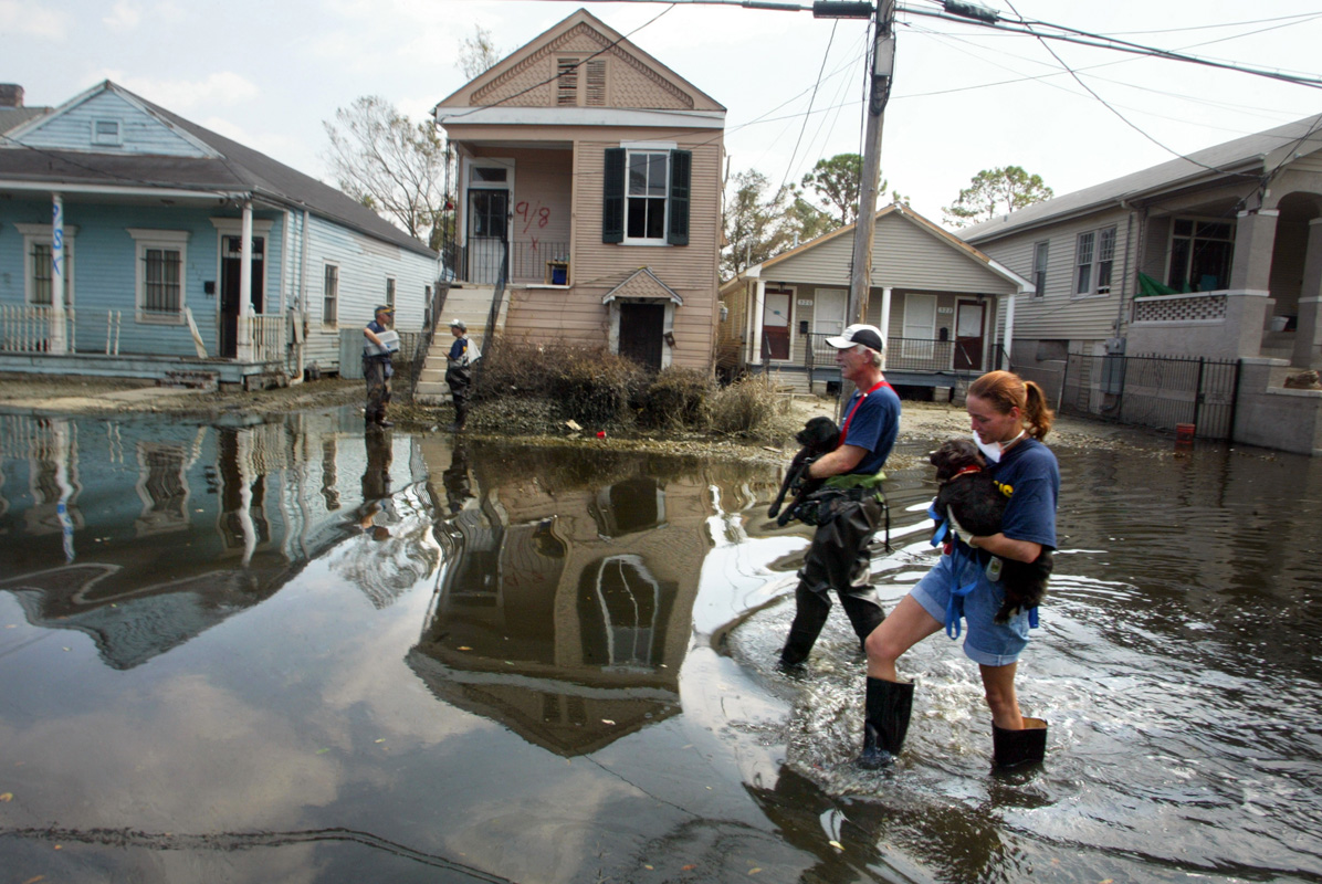 Animal rescuers from Pasado's Safe Haven, Bridgett Kizilski, from E. Haven, CT. and Larry Brothers from Bothell, WA, rescue 2 dogs from a porch on 4330 Banks St.in the Mid City neighborhood of New Orleans, LA on September 14, 2005.  The animals had been left in their homes since Hurricane Katrina hit the Gulf Coast two and a half weeks ago (Aug. 29) and broke the levees surrounding the city.   (photo by Karen Ducey)
