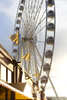 The Great Wheel in Seattle, Wash. (© copyright Karen Ducey)