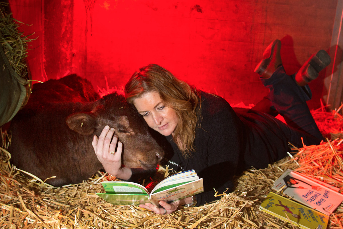 <p>Clarence, a calf rescued from a ditch, is comforted by volunteer Caroline Morgan who reads a Dr. Seuss book to him at the Northwest Equine Stewardship Center, in Snohomish, Washington on April 13, 2014. (photo by Karen Ducey Photography/karenducey.com)</p>