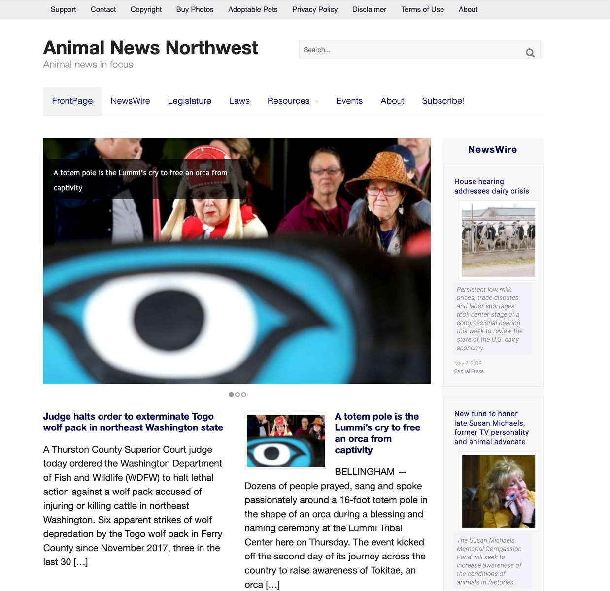 Animal News Northwest  is a website I produced from 2015-2017. Through original stories, photos and multimedia our mission is to empower individuals and communities with the knowledge and tools they need to spark conversation and effect public policy.
