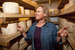 &quot;Help me out. Don't just try and kill me.&quot; specialty cheesemaker Kelli Estrella  says of her frustration in dealing with the the Food and Drug Administration at the Estrella Family Creamery in Montesano,Wash.  on November 4, 2010.   The FDA  ordered the Estrella Family Creamery in Montesano,Wash.  to stop processing cheeses after it found listeria bacteria on some of the cheeses this year.  The family says they have made many renovations on the farm and the bacteria is only found on the soft cheese, not everything.  They believe they should be allowed to resume making cheese and sell the hard cheeses they have already made at the facility.  The creamery is one of Washington's most famous artisan cheesemakers.  (photo credit Karen Ducey). .