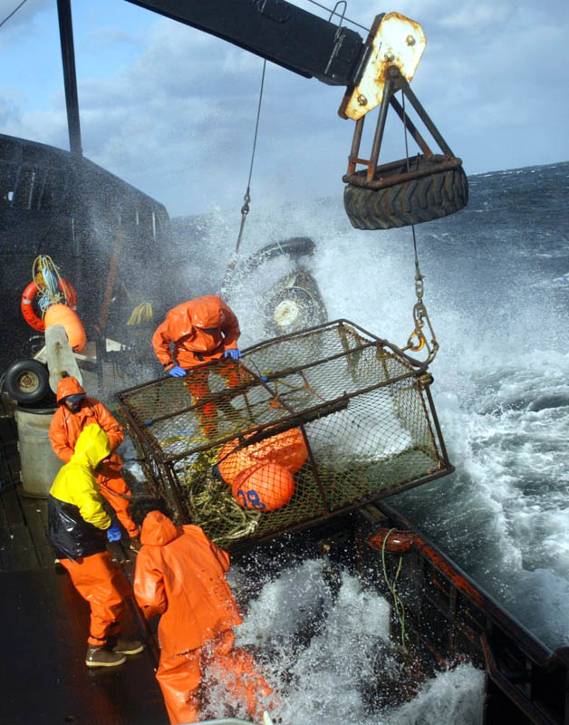 Crewmen on board the F/V Exito ready a crab pot to be stacked onboard while red king crab fishing in Bristol Bay. The season lasted 5 days and 2 hours and was plagued with gale force winds of 35 knots or higher almost everyday. (© copyright Karen Ducey)