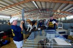 Volunteers work at the Lamar Dixon Expo Center where thousands of pets were sent after Hurricane Katrina 2005 © Karen Ducey