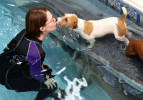 A dogs kisses his water therapist. (© copyright Karen Ducey)