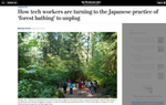 How tech workers are turning to the Japanese practice of 'forest bathing' to unplug   for the Washington Post, September 14, 2015.