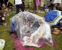 A group of friends drink alcohol and shelter from the rain under a plastic sheet on Derby Day at Epsom Downs Racecourse. June 2001