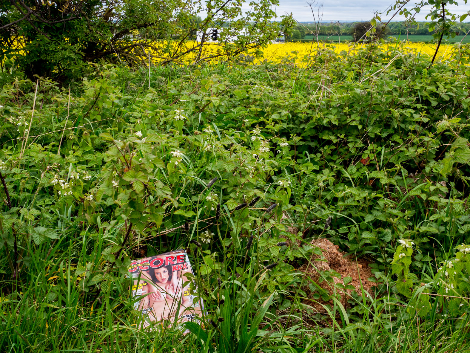 Discarded adult magazines found in a lay-by. West Yorkshire.
