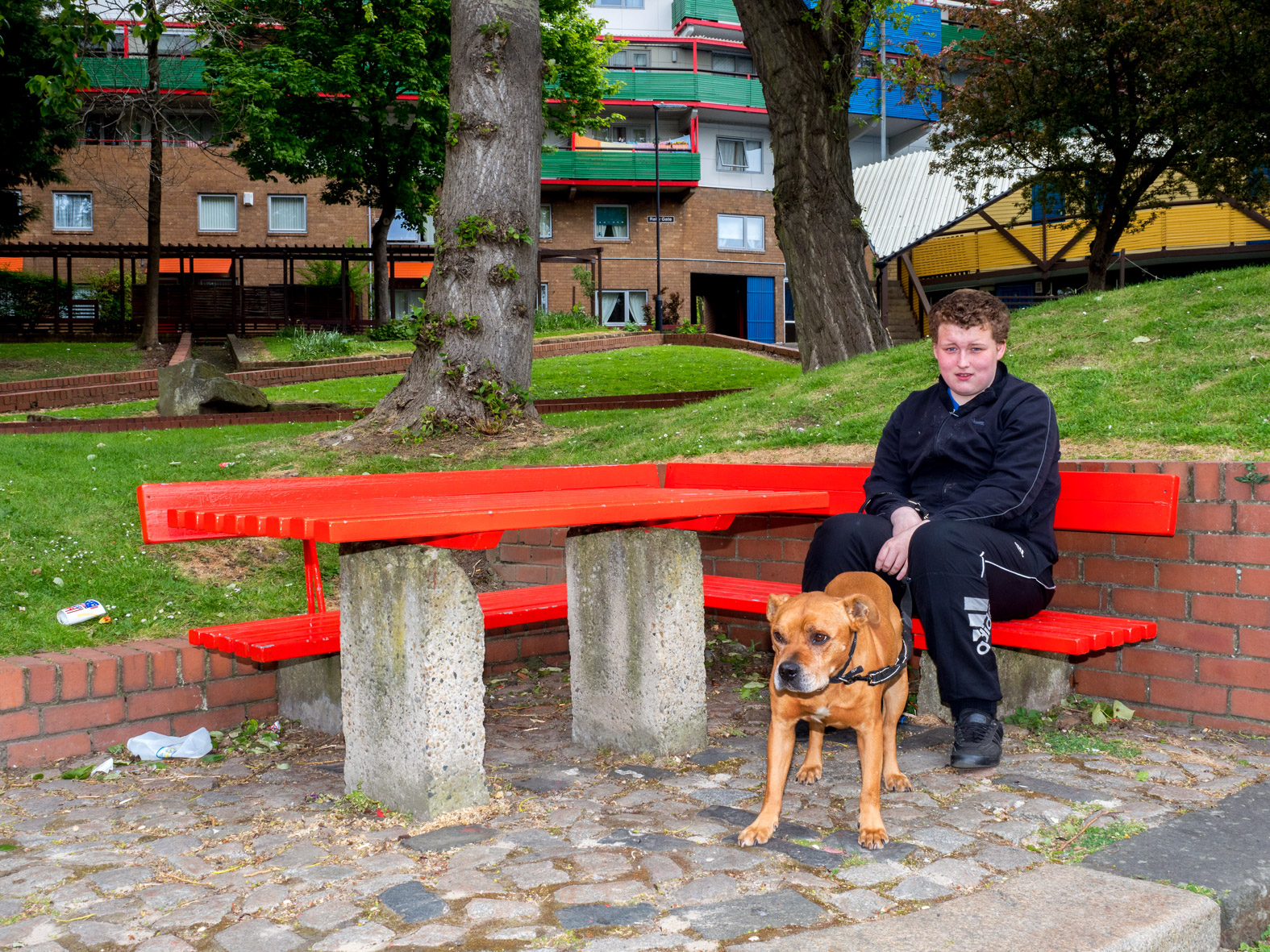 Dylan with his dog Rusty on the Byker Estate where they live. Newcastle, Tyne & Wear.