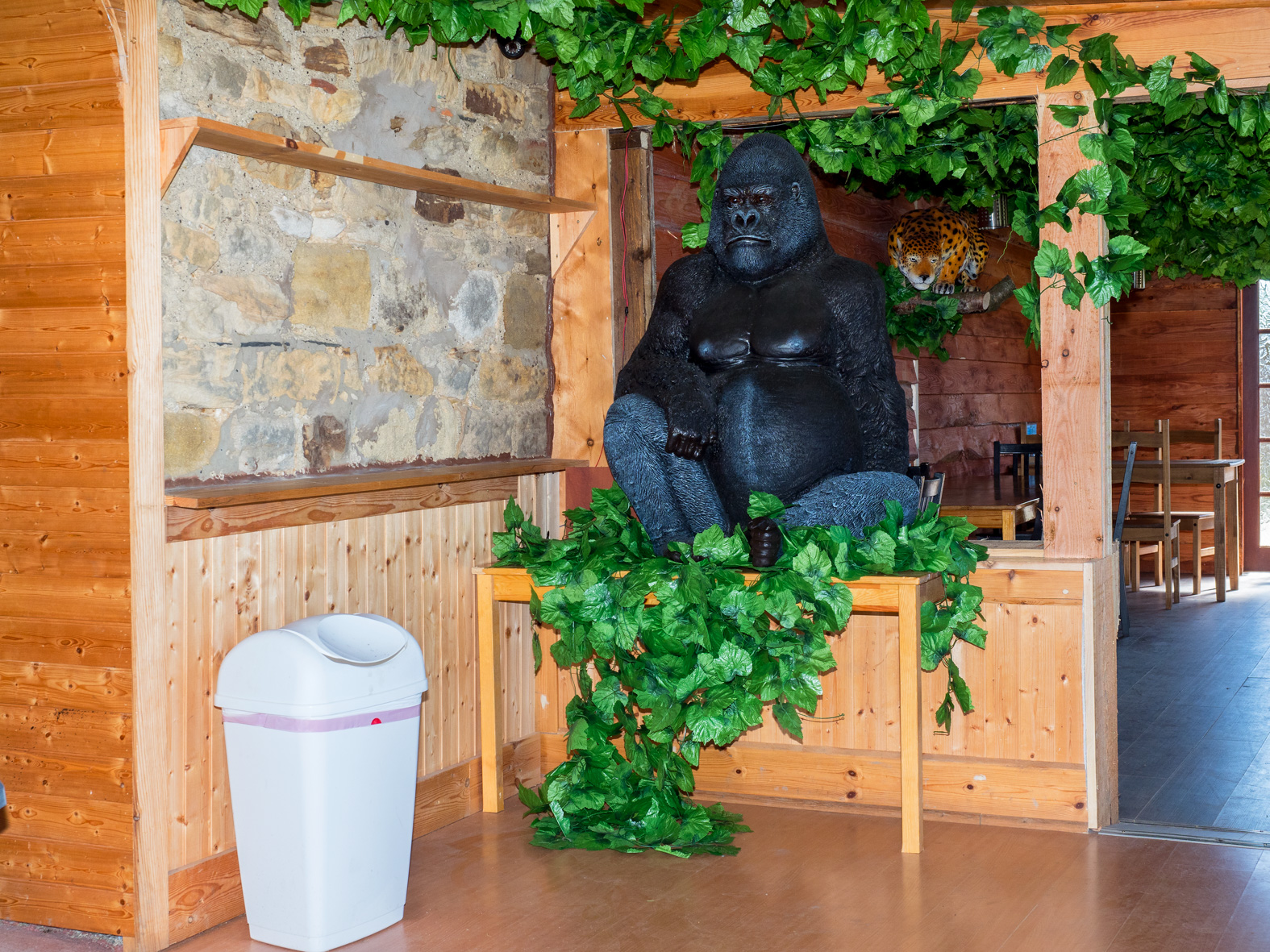 A plastic gorilla sits in the tea room at Esshottheugh Animal Park. Morpeth, Northumberland.