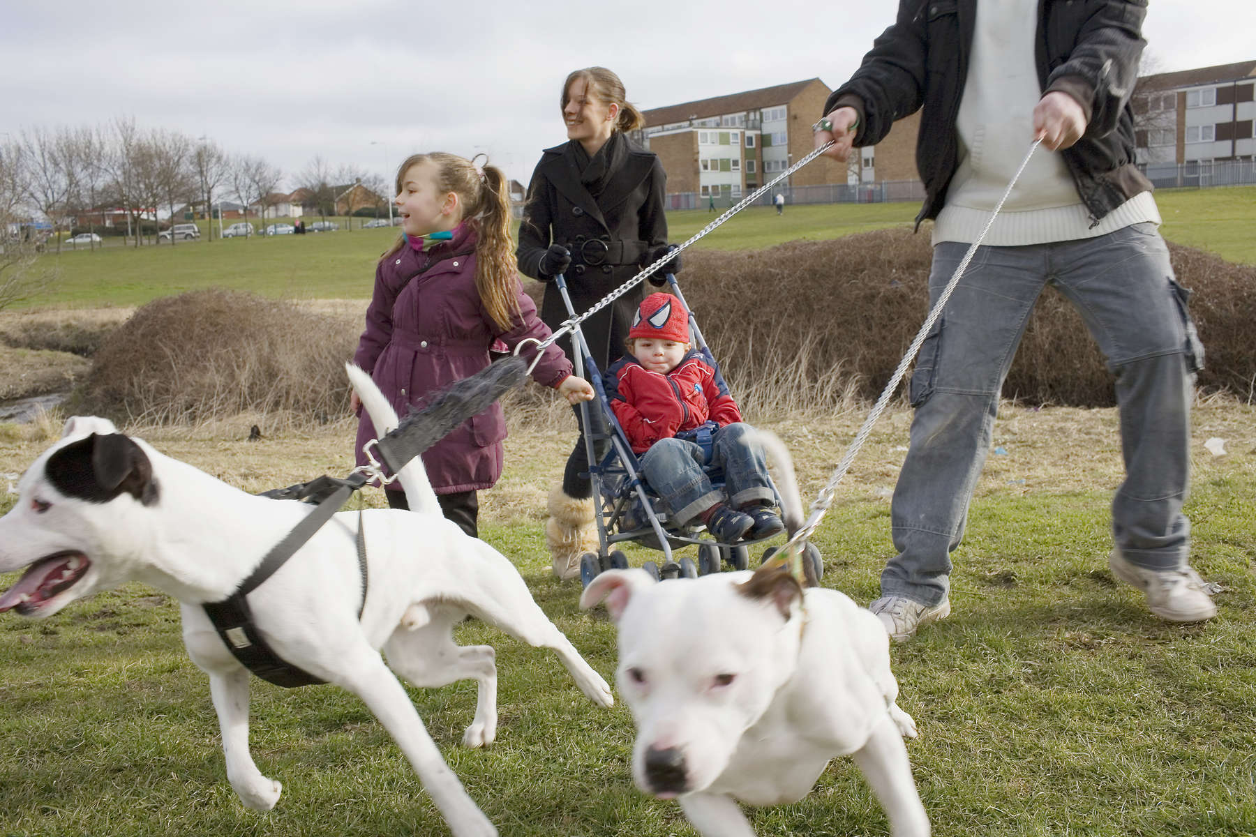 From left - 5 year old Ellie, Tina Connelly, Kayne 3, and Darren Bernard with dogs Ronnie and Boycie on park land in front of the crumbling Leys Estate in Dagenham.Dagenham is a large suburb in east London, England forming part of the borough of Barking & Dagenham 12 miles from Charing Cross. In 1931 the Ford Motor Company relocated to Dagenham. At its peak the plant had 4 million square feet of floor space employing 40,000. On February 20, 2002 full production was discontinued and the work force has shrunk to around 2500 causing economic decline to Dagenham and the surrounding area.