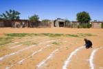 IOC_Namibia088