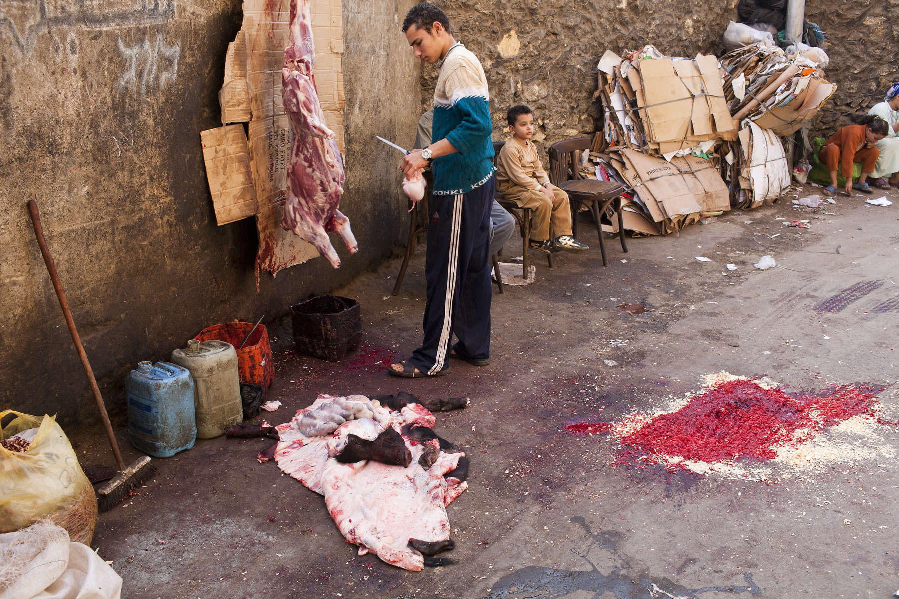 "A Zabaleen man skins a slaughtered pig in Moqqatam.Moqqatam is a suburb on the edge of Cairo and home to a people known as the Zabaleen, said to be the world's greatest waste recyclers. The Zabaleen, which means plainly enough, ""the garbage collectors"", pick up around 4,000 tons of Cairo's waste each day. American researchers have shown that the Zabaleen recycle 85% of this garbage into something useful: a higher rate than anywhere else on the planet. The men do two shifts leaving about 4am and again around 9am. The rubbish is taken back to Moqqatam for the women to sit in and sort through. The organic waste is fed to livestock (the Zabaleen are originally swine herders), the rest sorted for recycling. The future of the Zabaleen is uncertain: if the Cairo authorities get their way, this community of around 25,000 Coptic Christians living in a Muslim country will be gone, and with it, their unique lifestyle."