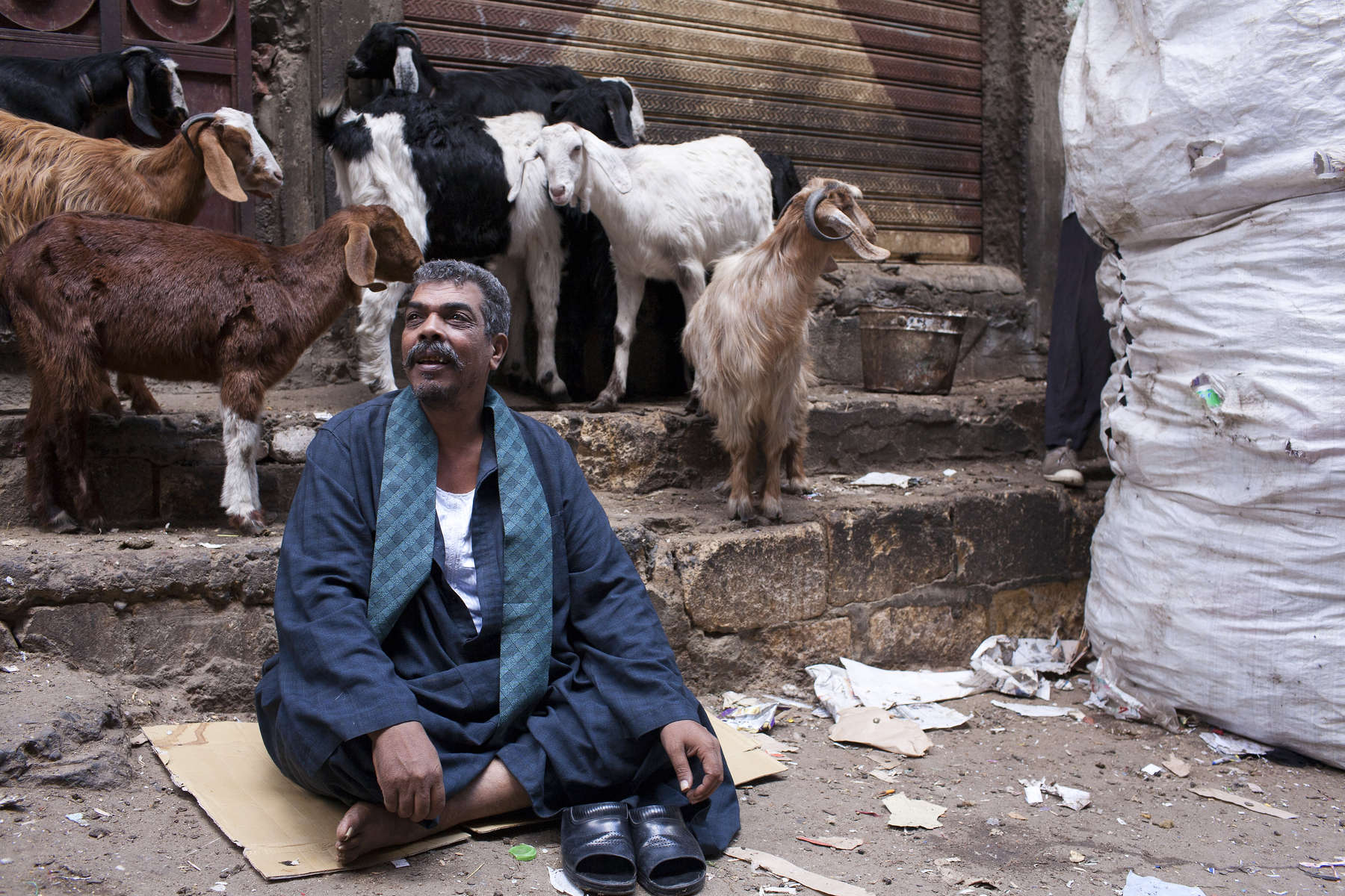 "A Zabaleen man sits with his goats on the street in Moqqatam.Moqqatam is a suburb on the edge of Cairo and home to a people known as the Zabaleen, said to be the world's greatest waste recyclers. The Zabaleen, which means plainly enough, ""the garbage collectors"", pick up around 4,000 tons of Cairo's waste each day. American researchers have shown that the Zabaleen recycle 85% of this garbage into something useful: a higher rate than anywhere else on the planet. The men do two shifts leaving about 4am and again around 9am. The rubbish is taken back to Moqqatam for the women to sit in and sort through. The organic waste is fed to livestock (the Zabaleen are originally swine herders), the rest sorted for recycling. The future of the Zabaleen is uncertain: if the Cairo authorities get their way, this community of around 25,000 Coptic Christians living in a Muslim country will be gone, and with it, their unique lifestyle."