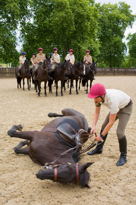 household_cavalry_40