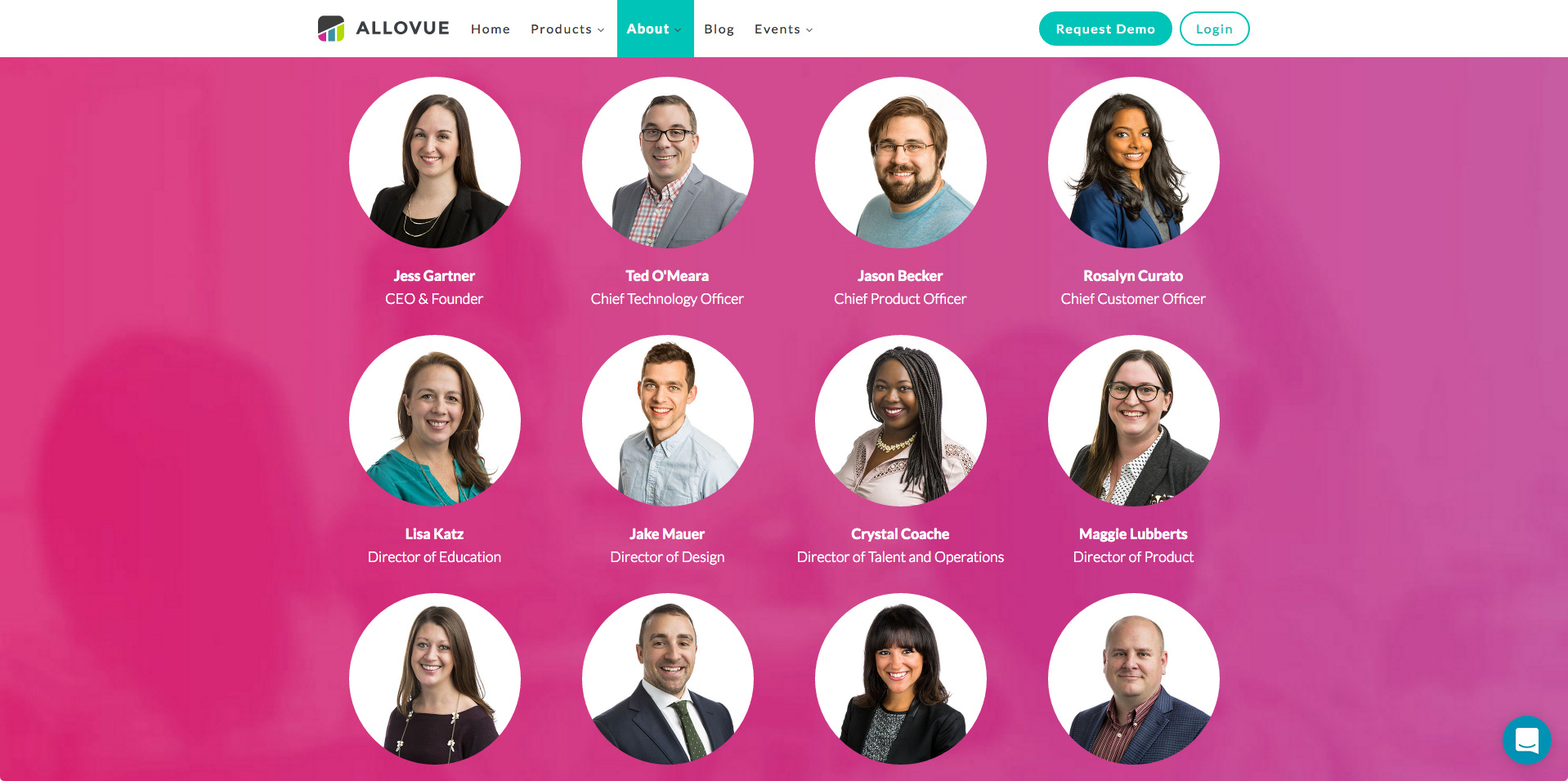 Allovue-Website