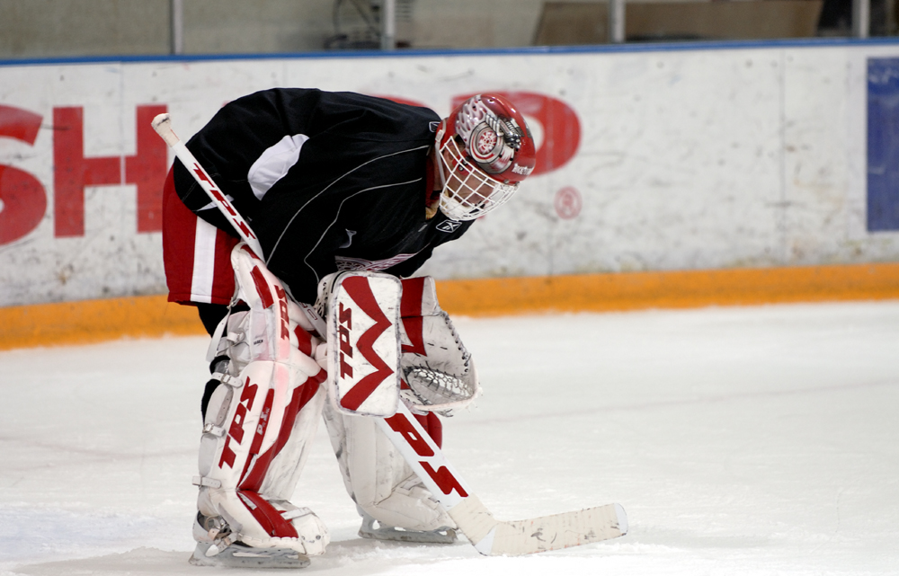 Dominic Hasek - Detroit Red Wings