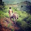 haitianjournal_10x10_015