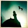 100411_Afghanistan_iPhone_0060